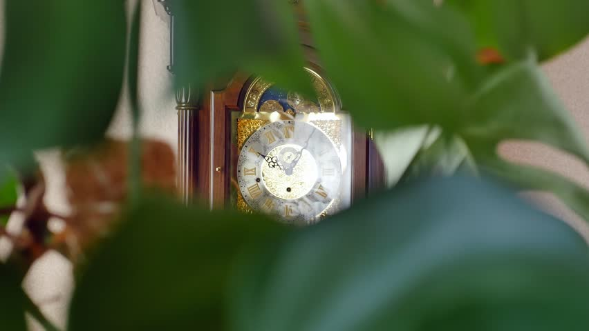 Vintage grandfather clock ticking on wall.