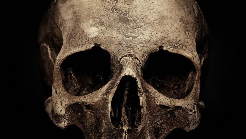 Ancient Human Skull Rotating Closeup Loop