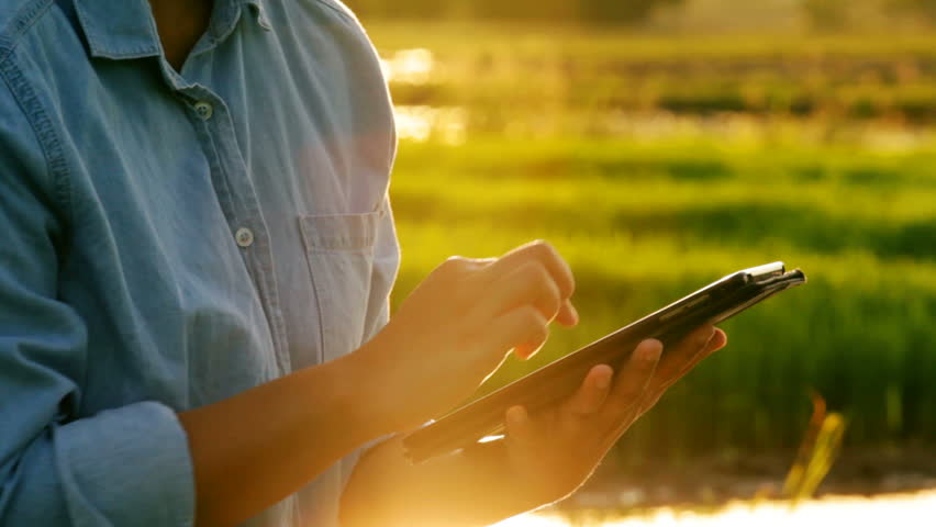 Close-up of asian young female using digital tablet in agricultural field