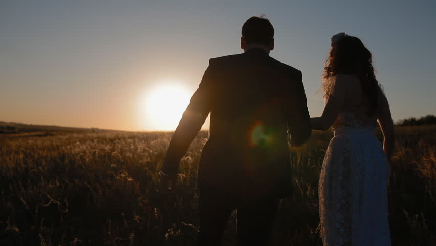 Groom and his beautiful bride walk on the field in sunset back light holding hands.Slow motion. Overall plan. | Shutterstock HD Video #28156231