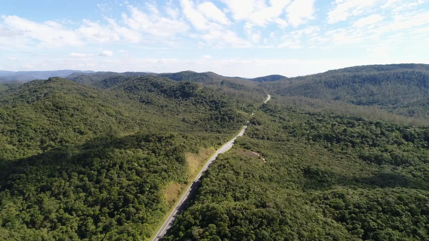 Aerial shot of a road and forest