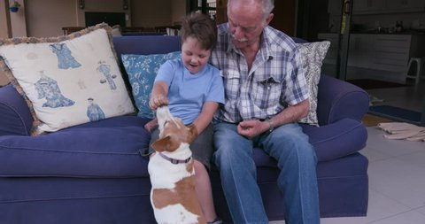 Grandfather and grandson having fun with a small dog sitting on a couch