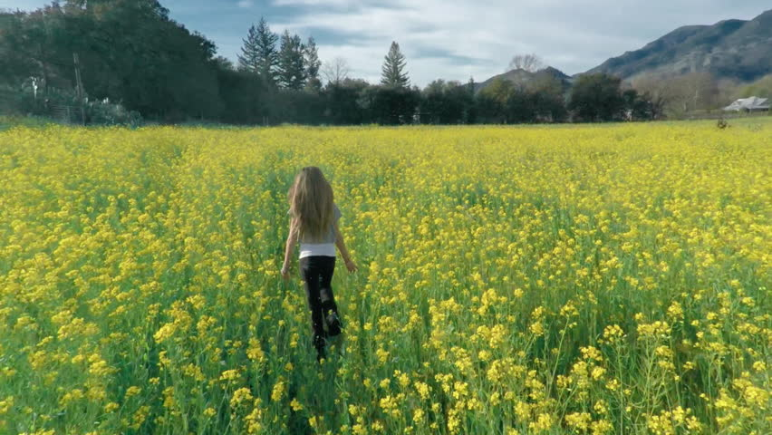 Aerial drone view of young girl running in a flower meadow orchid with her dog in slow motion. Napa, California. 25 February 2015 | Shutterstock HD Video #28805731