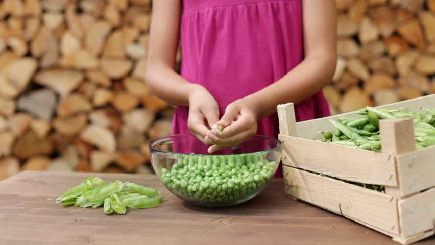Detail of designer woman wrapping gift wrapped gift using binding young girl outdoors shelling peas into a glass bowl closeup on hands camera slide negle Images