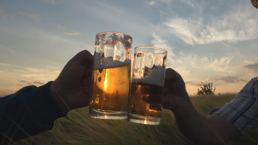 Two farmers toast with beer in field ,Sow motion Handheld camera Balanced Steady shot