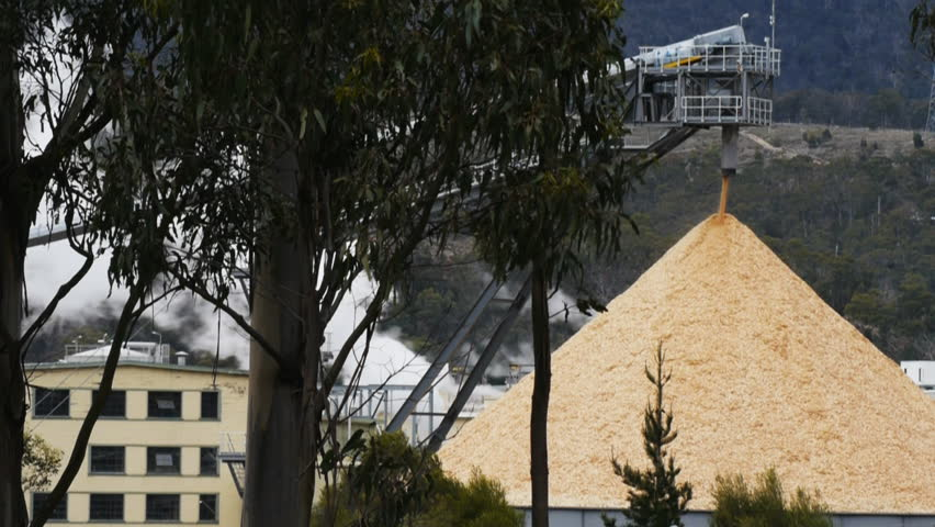 a stockpile of wood chips at the boyer newsprint mill in tasmania, australia