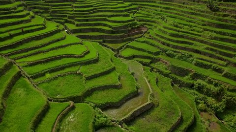 Batad Rice Terrace, aerial view of ancient Ifugao rice terraces carved into the mountain at Batad, northern Luzon, Philippines.