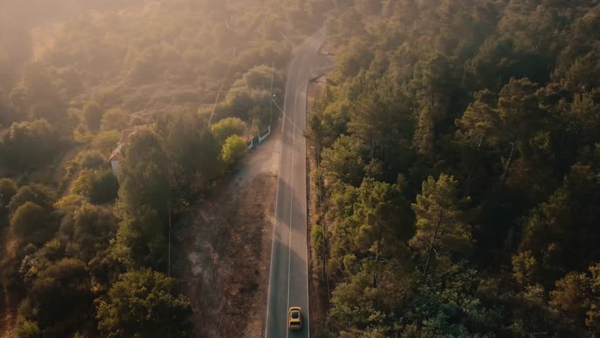 Aerial view of a car riding on the highway through the forest on the countryside. Cinematic drone footage of a car riding away from camera in pine forest road during sunrise in Europe. | Shutterstock HD Video #30065221