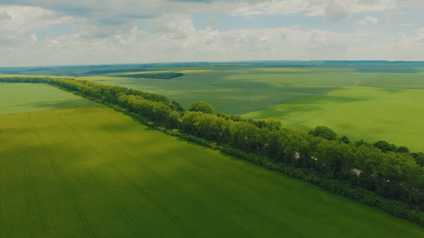 Amazing aerial view of wheatfields and meadow in 4K | Shutterstock HD Video #30223063
