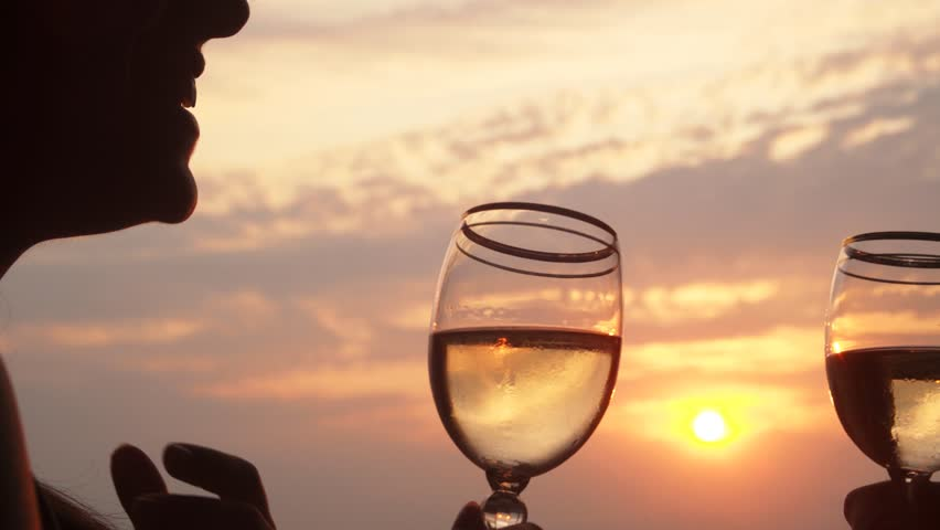 Couple is toasting with wine glasses during a beautiful summertime sunset.