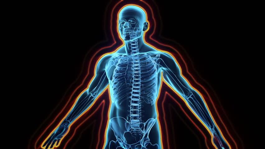 Immune system defence, body loop rotation on black background