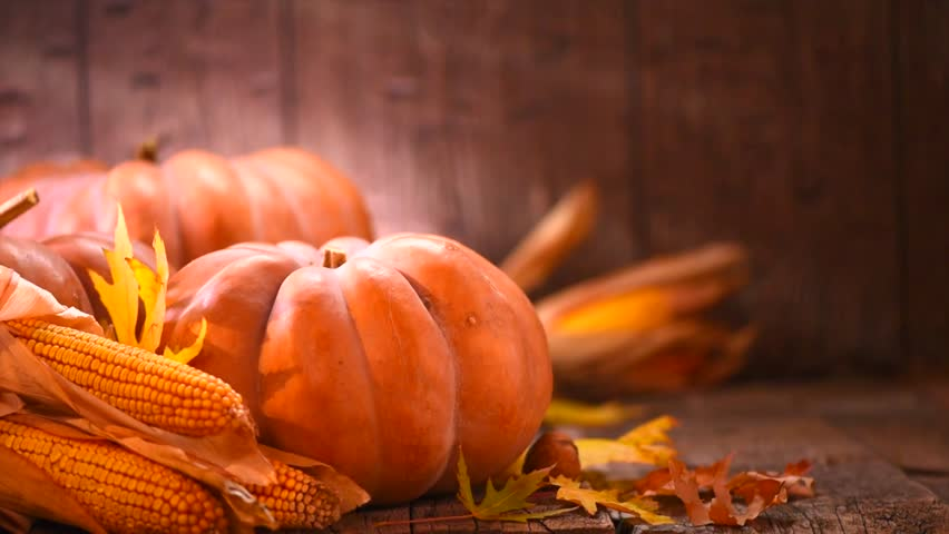Thanksgiving Day. Pumpkin, Squash. Happy Thanksgiving Day wooden Table Background decorated with pumpkins, corn comb, candles and autumn leaves garland. Holiday Autumn festival scene, Fall, Harvest 4K   Shutterstock HD Video #30614581