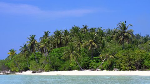 Tropical island at maldivian atoll in Indian Ocean. Wild  and uninhabited coast with palm trees. Travel destinations