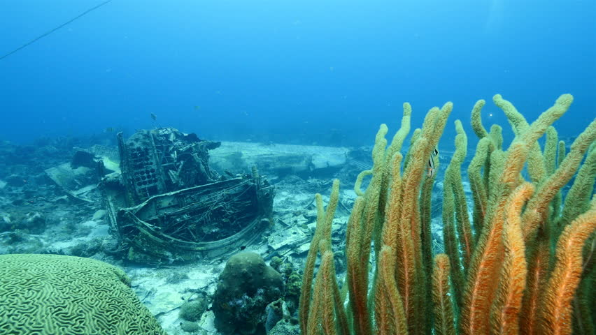 Plane wreck as a part of the coral reef in the Caribbean Sea around Curacao with diver photographer in blue background and soft coral in foreground