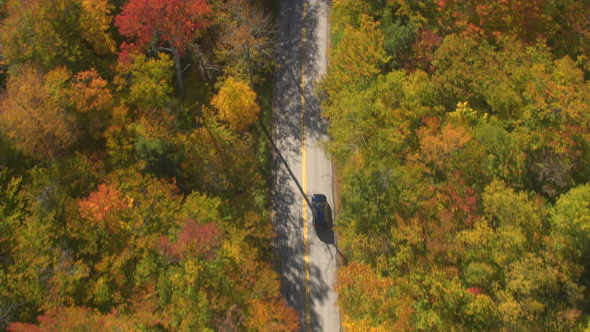 AERIAL TOP DOWN: Black SUV car driving the empty road leading through colorful forest on sunny autumn day. Car on leaf peeping road trip driving through autumn forest in sunny fall. Nature drive