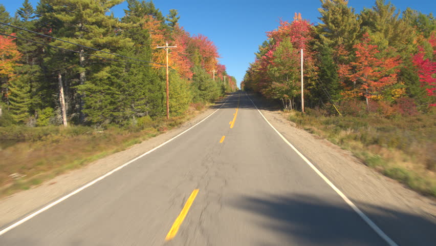 POV: Driving on empty road through stunning colorful forest on sunny autumn day. FPV People on leaf peeping road trip driving through autumn forest in sunny fall. Beautiful fall foliage nature drive