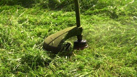 Grass Cutting  Mowing Grass  Grass Stock Footage Video (100