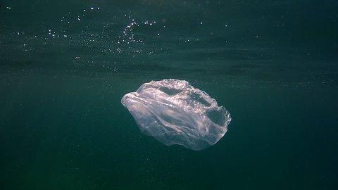 Sea ecology  Description: Nylon bag floating in the sea.