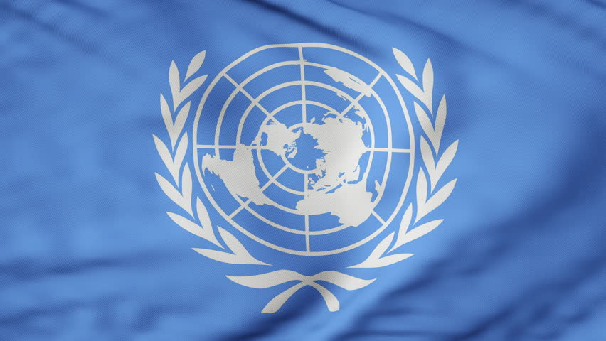 The United Nations flag waving in the wind. The flag flaps in the breeze, filling the whole frame. See portfolio for similar and much more! | Shutterstock HD Video #30982261