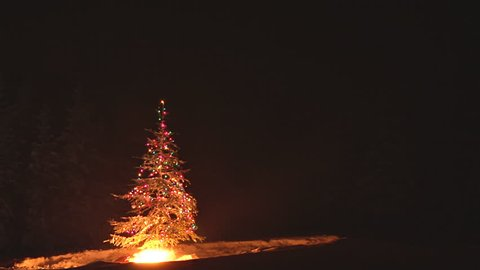 Time-lapse of an outdoor Christmas Tree burning