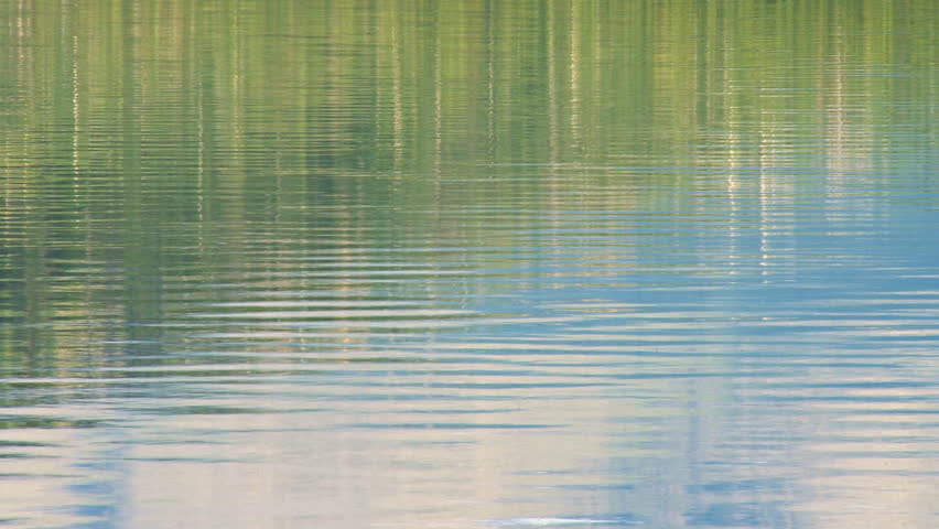 Blue-green forest-sky reflections on rippling lake waters.