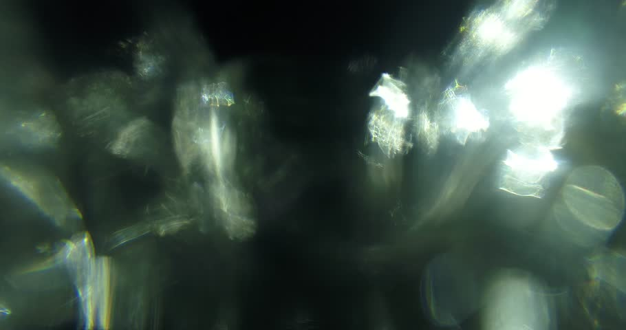 Light Leaks - Dazzling transition
