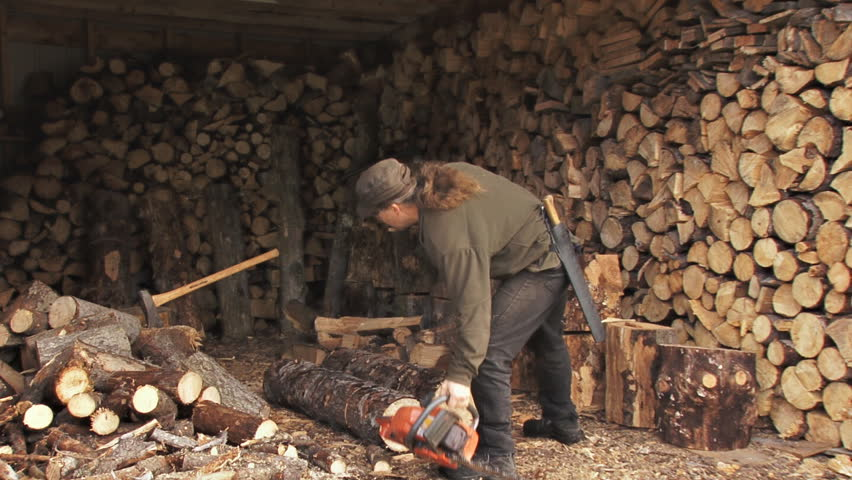 Slowly but surely, the woodshed fills up. Here, the woodcutter deposits log and saw before returning to the woods for the rest of the tree.