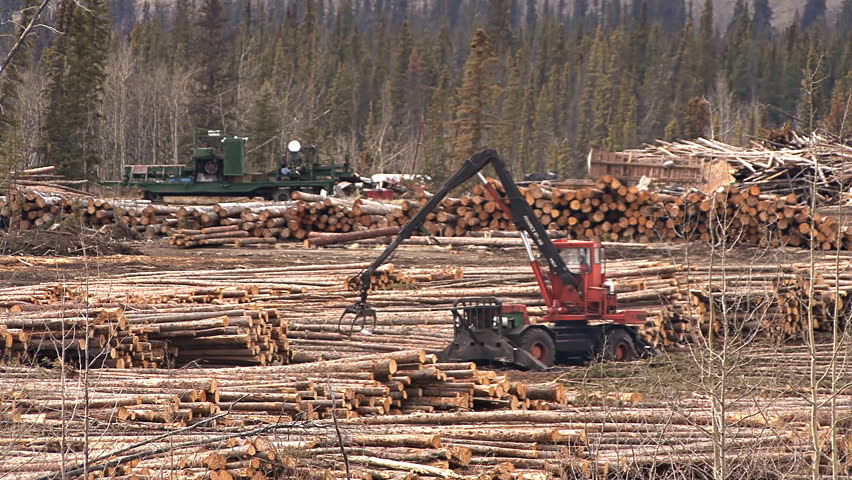 BRITISH COLUMBIA, CANADA - CIRCA 2012: A yarder works to rearrange logs in a logging operation.