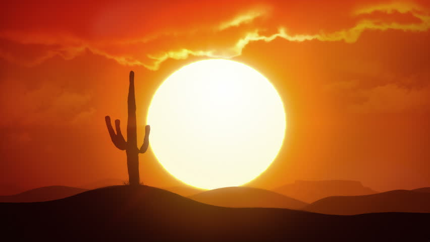 Time lapse of big sunrise over desert with silhouette of lone cactus in foreground | Shutterstock HD Video #31515772