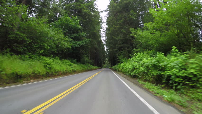 Driving Down Road In Coastal Range Of Oregon, USA