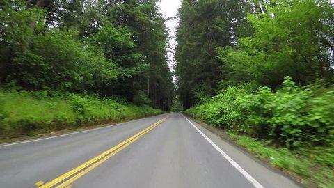 Driving Down Road In Coastal Range Of Oregon, USA
