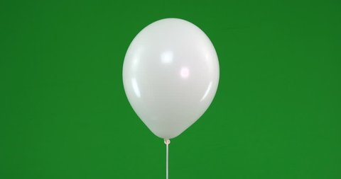 Green screen of white Balloons that rise