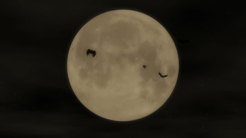 Bat Attack - Halloween Party Video Background Loop  ///  Bats attacking in front of a full moon. A perfectly looping Halloween visual - great for clubs and parties.