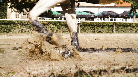 Horse hooves splashing in to water puddle close up slow mov 4K. Long shot close up tracking hooves in focus wearing plastic protectors and running around riding arena.