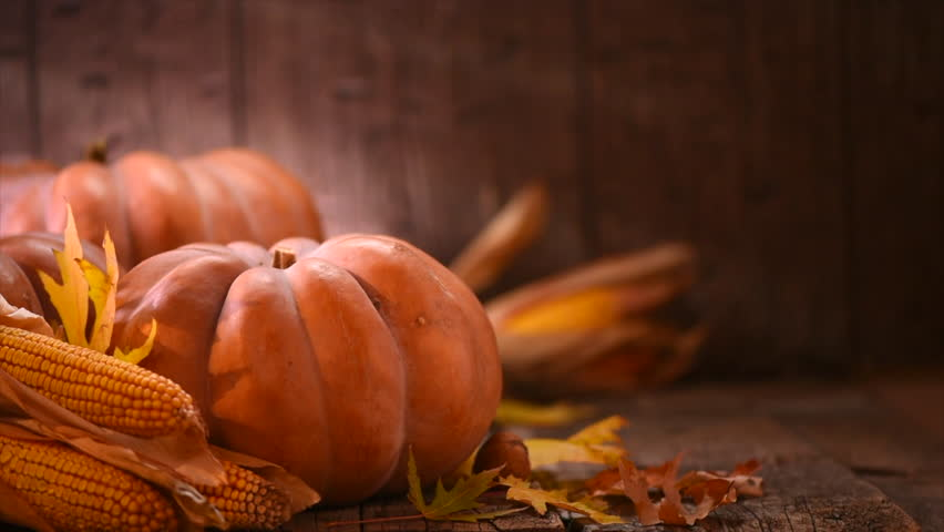 Thanksgiving Day. Pumpkin, Squash. Happy Thanksgiving Day wooden Table Background decorated with pumpkins, corn comb, candles and autumn leaves garland. Holiday Autumn festival scene, Fall, Harvest 4K   Shutterstock HD Video #32111971