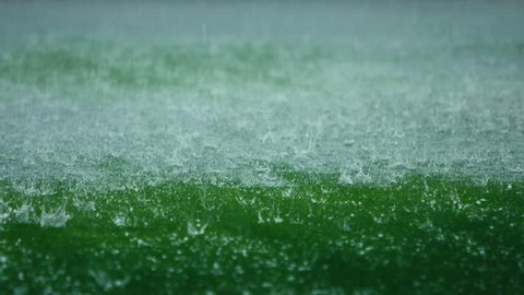 Amazing slow motion shot of hailstones falling on greensward. Summer storm