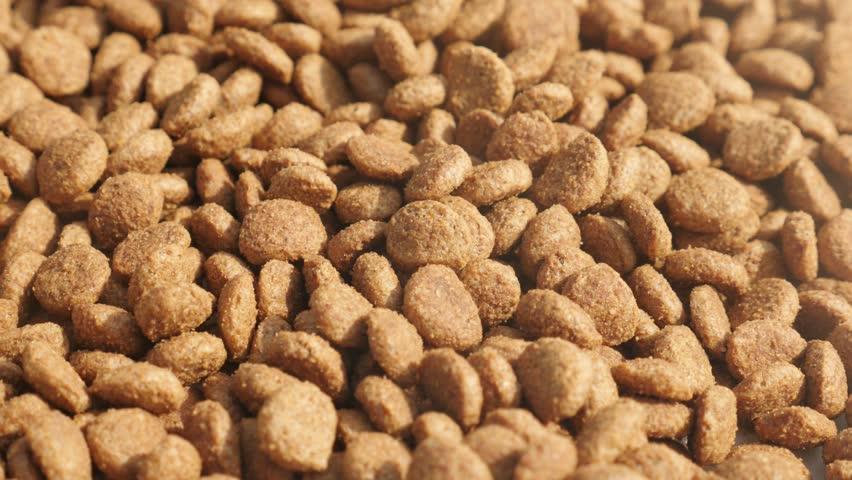 Close-up of pet dry food 4K 2160p 30fps UltraHD tilting footage - Pile of cat or dog pellets  slow tilt 3840X2160 UHD video