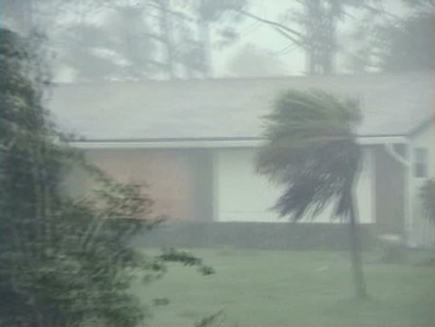 Hurricane winds and rain blowing through a residential neighborhood.