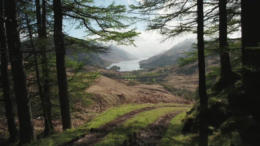 Stunning aerial shot revealing the Glenfinnan Viaduct through tree's in the foreground