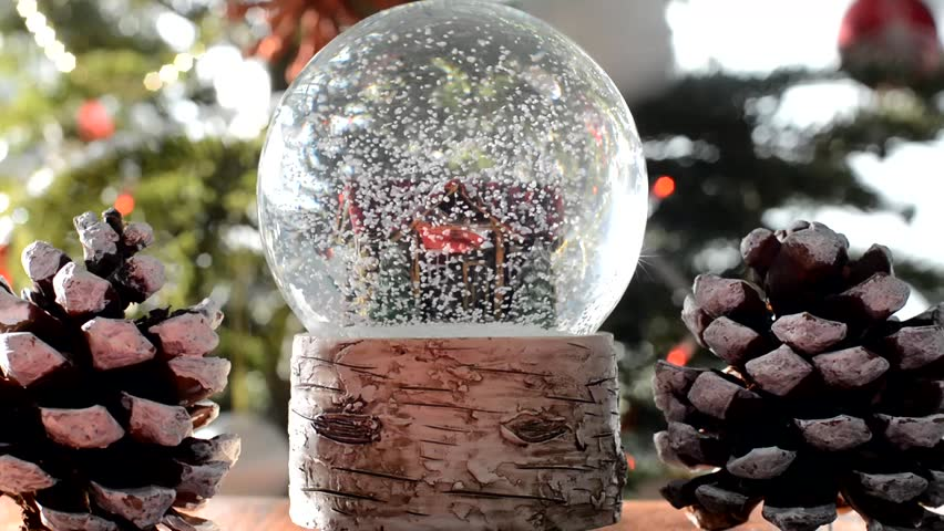 snow globe on a christmas tree background