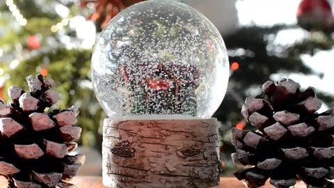 snow globe on a christmas tree background