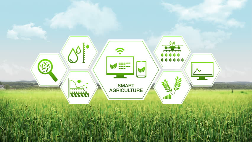 Smart agriculture Smart farming, hexagon information graphic icon, internet of things. 4th Industrial Revolution.1.