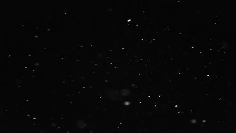 Snow Particles Falling From the Night Sky