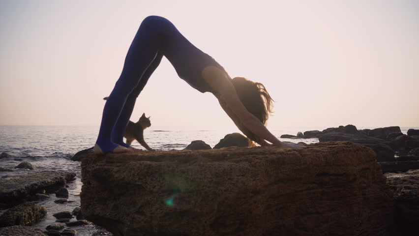 Young woman in bodysuit practicing yoga with cat on the beach above sea at amazing sunrise. Fitness, sport, yoga and healthy lifestyle concept. Girl doing a bridge,