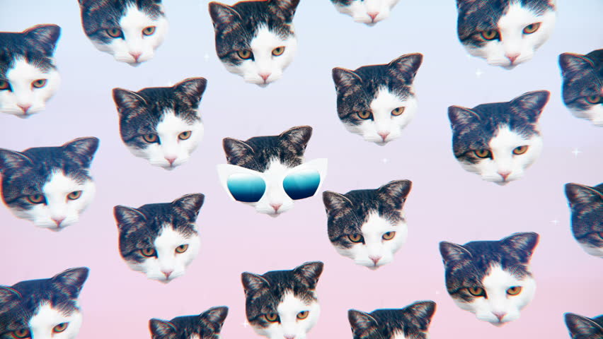 Minimal Motion design Fun Art. Kitty glamour style. Fashion Sunglasses mood  | Shutterstock HD Video #32923711