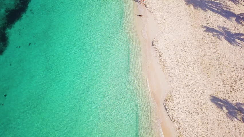 Aerial footage of seven mile beach in the tropical paradise of the cayman islands in the caribbean sea   Shutterstock HD Video #33022951