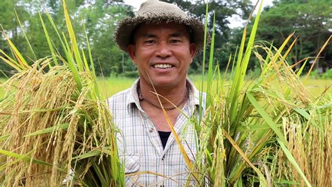 Happy Thai farmer smile after rice harvest in organic agriculture rice field farm in Chiang Mai, Thailand