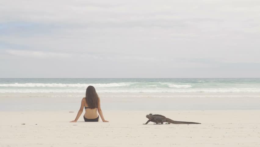 Vacation travel woman relaxing on beach with Marine Iguana walking by on Tortuga bay beach, Santa Cruz Island, Galapagos Islands. Funny travel holidays video, Ecuador, South America.