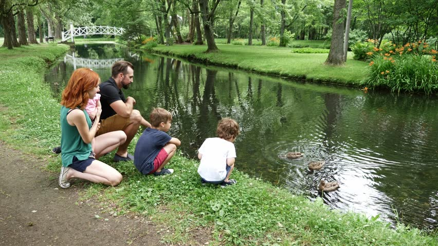 Families with children close to a waterscape with duck on it