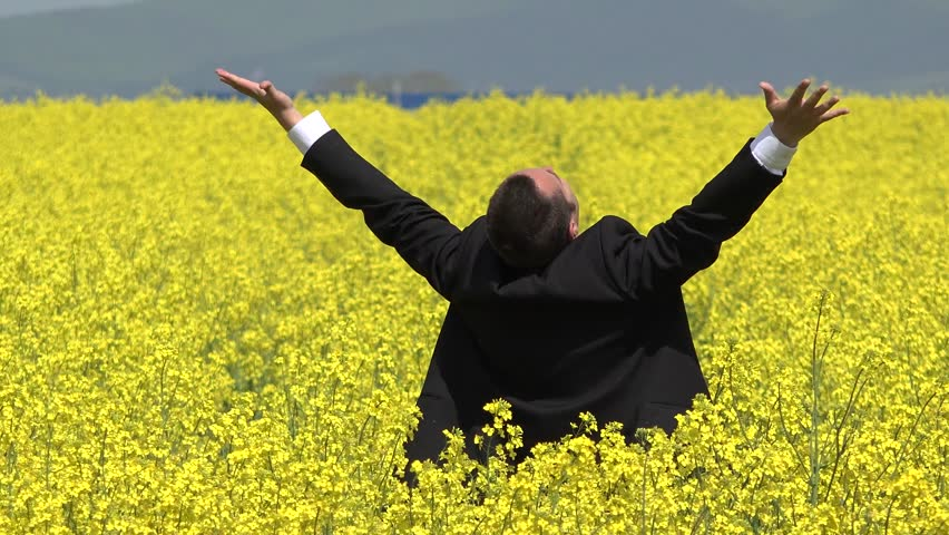 Happy man with suit raising up hands in rape field, enjoy richness of business